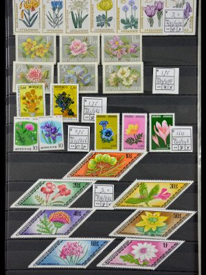 Stamp collection 29462 Flowers.
