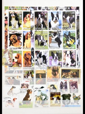 Stamp collection 30501 Dogs