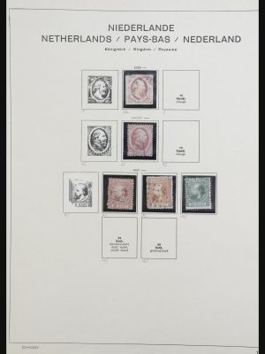 Stamp collection 31991 Netherlands 1852-1966.
